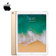 Apple iPad Pro (2nd Gen) 12.9 Wi-Fi 512GB ( MPL12ZP )